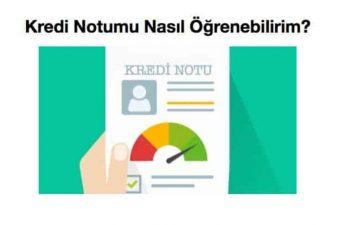 Kredi Notu Sorgulama (Ücretsiz Öğrenme)